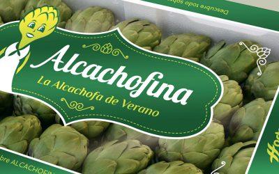 Alcachofina, líder nacional en verano