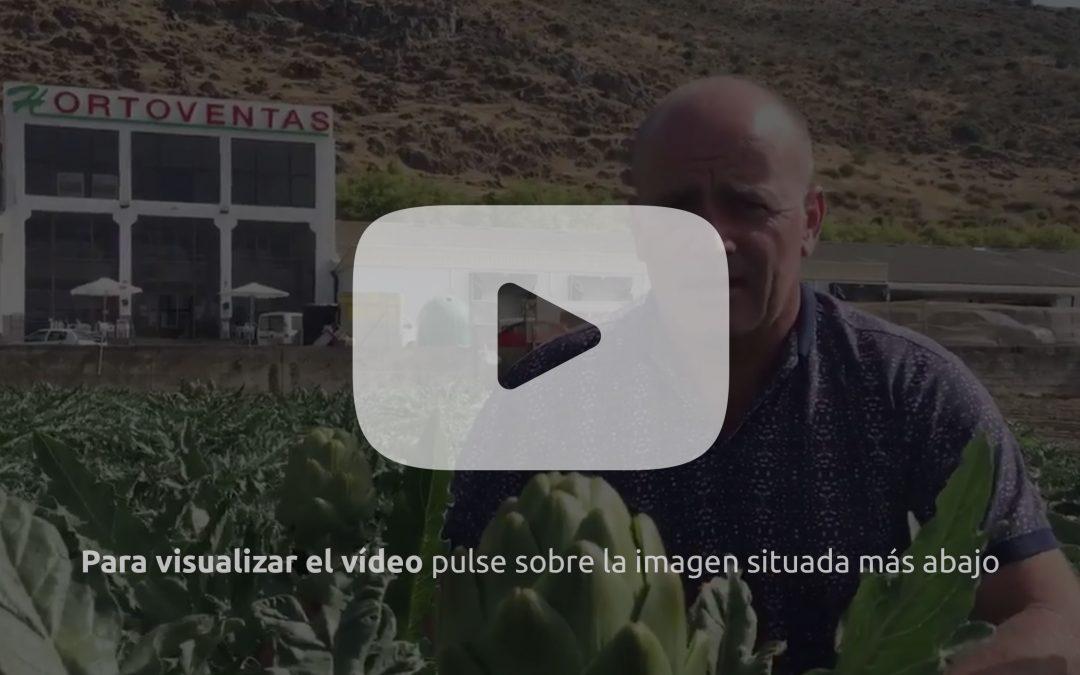 El presidente de Hortoventas, Juan Antonio Guerreo, habla para la Revista f&h de Alcachofina